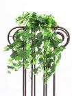 Efeuranke Classic, grün, 50cm